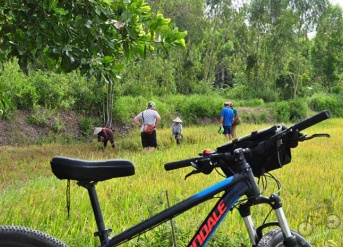 Excellent Cycling Mekong Delta 3 Days
