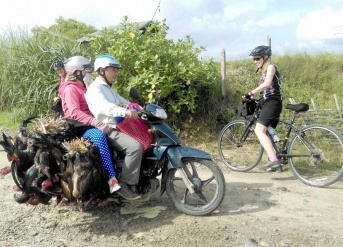 Cycling Saigon Mekong HoiAn Hue 15 Days