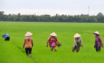 Hue and HoiAn Attractions