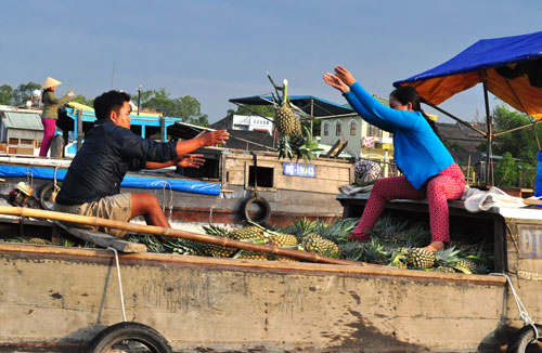Mekong Delta Cycling Tour 2 days 1 night With Vietnam By Bike®